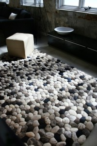 kiwi piedra